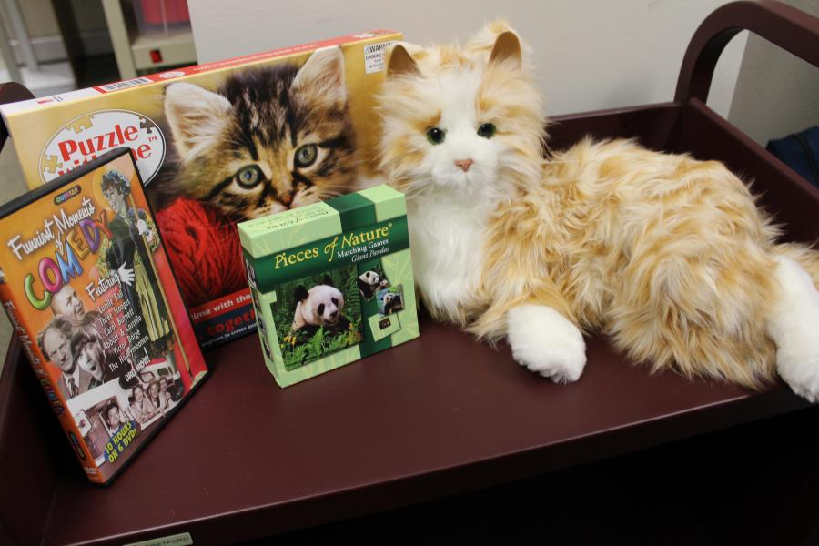 A kit including lifelike toy cat, comedy DVD, puzzle, and matching game.