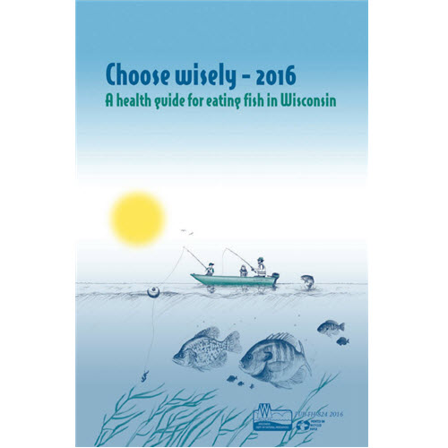 Cover of Choose Wisely 2016